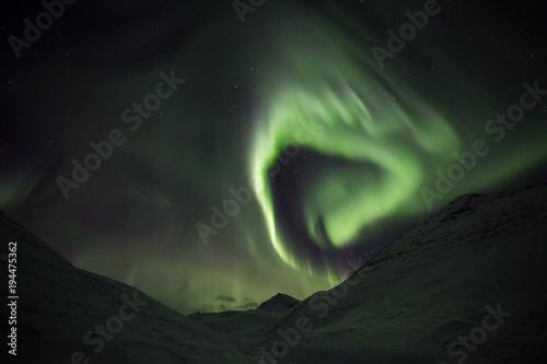 Deurstickers Khaki icelandic aurora