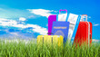 Travel concept in green grass against blue sky, 3d rendering