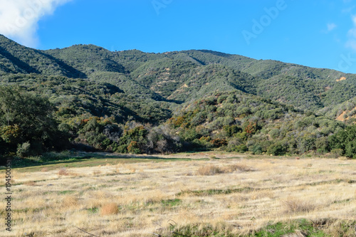 Tuinposter Beige Dry meadow grass with lush hillsides in mountains