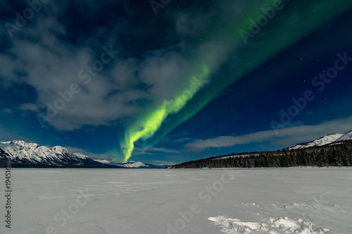 Aluminium Nachtblauw Northern Lights Aurora Borealis, Yukon Territory, Canada