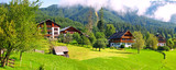 rural landscape with green grass and houses, a European village - 194550334