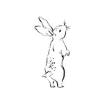 Hand drawn vector abstract ink sketch graphic drawing Happy Easter cute simple bunny illustrations elements for your design isolated on white background - 194566928