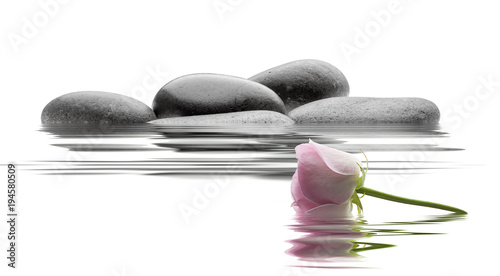 Foto op Canvas Zen spa de piedras y agua en fondo blanco