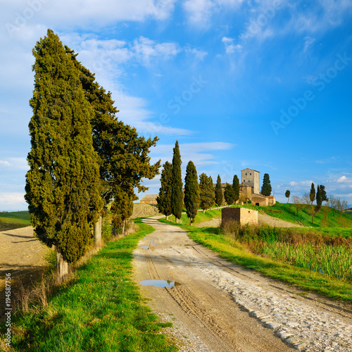 Aluminium Toscane Tuscany, Rural Landscape, Cypress Trees along Dirt Road, Old Farm Buildings