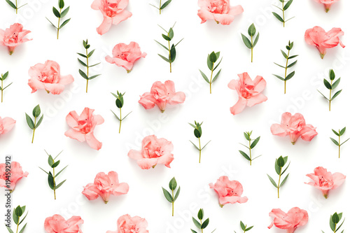 Pattern With Soft Pink Azalea Flowers And Green Leaves On White Background - 194592912