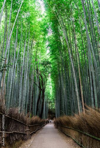 Poster Kyoto 京都 竹林の道
