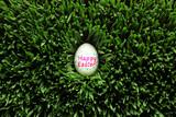 Single Happy Easter egg hidden in grass - 194663970