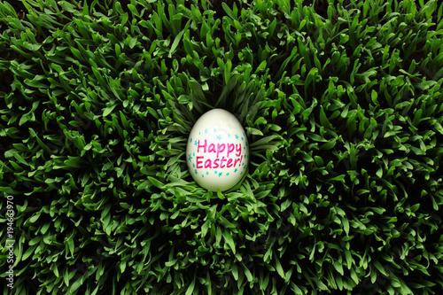 In de dag Gras Single Happy Easter egg hidden in grass