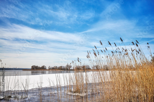 Aluminium Blauwe hemel Picturesque winter landscape with dry reed by a frozen lake.