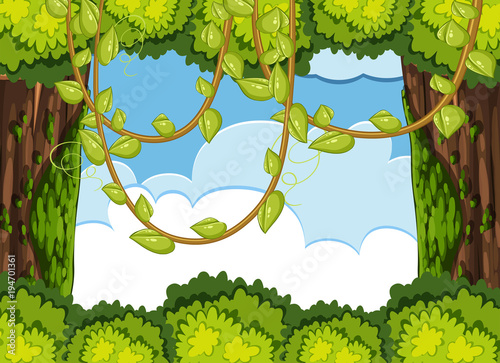 Aluminium Lime groen Forest scene with tree and vine