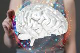 brain - 194717969