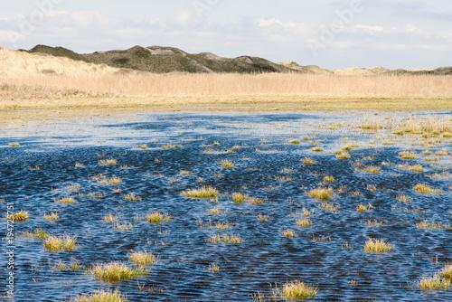 Aluminium Beige Dunes in North Jutland, Denmark