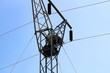 Two raven nests at the top of a power pole tower