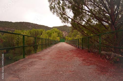 Staande foto Weg in bos Puente