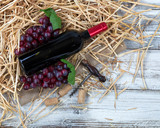 An unopen bottle of red wine plus grapes on top of straw and burlap with white rustic wooden boards underneath - 194773790