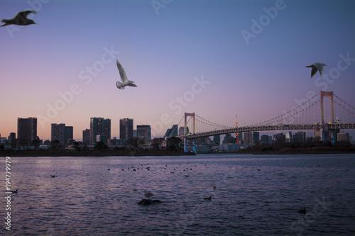 Aluminium Tokio Sunset in Tokyo