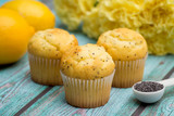 Lemon Poppyseed Muffins on a Blue Wooden Table