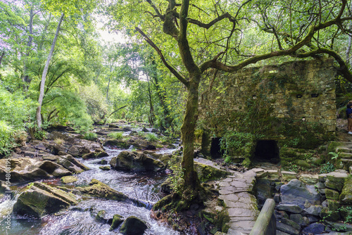 Fotobehang Rio de Janeiro Riverbed full of stones and the ruins of a mill from the bank of the river Anllons in a typical Atlantic oak forest in Galicia, Spain