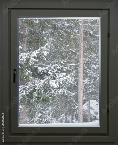 A window with a cold snow storm outside and snowy trees. - 194809165