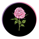 Beautiful rose flower in a black circle. Floral vector.