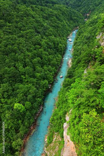 Summer landscape of the Tara River Canyon, Montenegro, Europe - 194888901