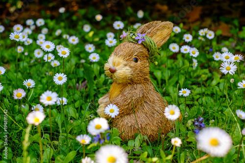 Jouet lapin en paille dans le champ de paquerettes au printemps.