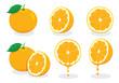 illustration fresh orange, vector