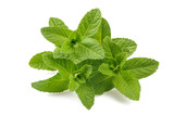 Fresh mint sprigs - 194946506