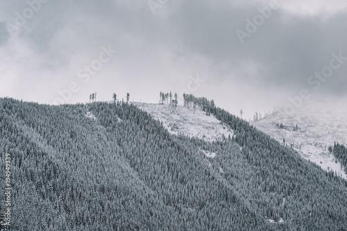 Dark grey Winter landscape, snowy mountains