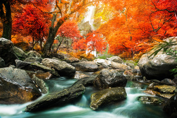 Amazing waterfall in colorful autumn forest