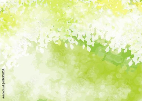 フレッシュ緑 四
