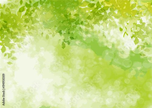 フレッシュ緑 三