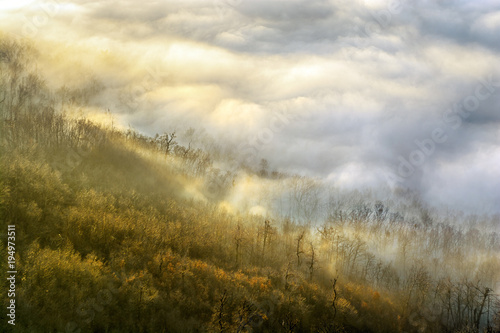 Tuinposter Beige Wooded hill slope covered with colourful clouds, top view