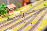 Train hobby model with railways, trees, grass and stations - 194981544