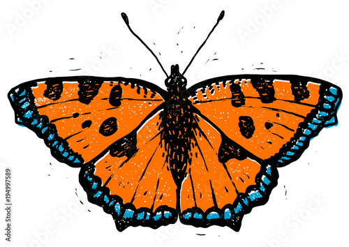 Papiers peints Papillons dans Grunge Tortoiseshell butterfly linocut illustration, draw, ink, vector