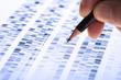 Wissenschaftler untersucht DNA-Gel