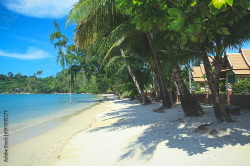 Fotobehang Thailand Tropical Palm tree Beach with luxury bungalows on Koh Chang