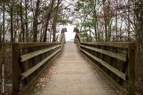 Drewniany most w parku