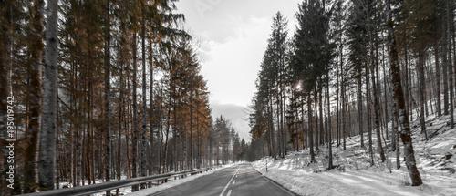 roadtrip - 195019742