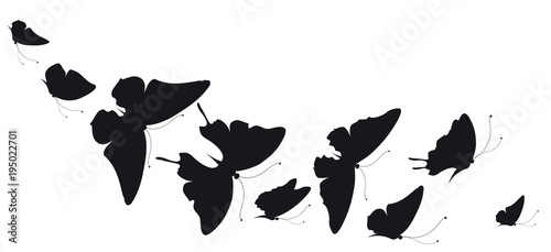 Aluminium Vlinder black butterfly, isolated on a white