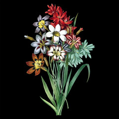 Vintage drawing of flowers. Vector illustration.