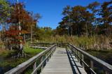 Black Bayou Lake National Wildlife Refuge Boardwalk