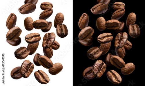 Falling coffee beans isolated on white and black background - 195045599