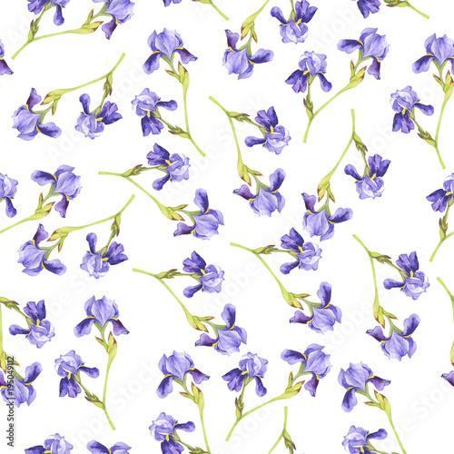 bezszwowy-wzor-z-lilym-irysem-kwitnie-na-bialym-tle-recznie-rysowane-akwarela-ilustracja