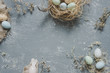 Easter composition. Easter eggs with easter decoration, top view. Copy space