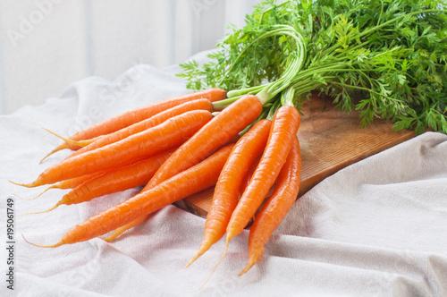 Bunch of fresh carrot