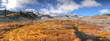 Panoramic view of Mt Rainier landscape on a beautiful autumn day