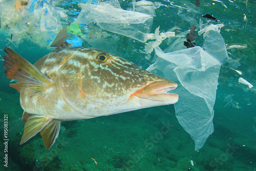 Plastic Ocean Pollution And Fish Bags Dumped In Sea Contaminate Seafood