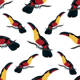 Tropical seamless pattern with colorful toucans. Summer vector exotic textile texture with cute birds. Colorful background.