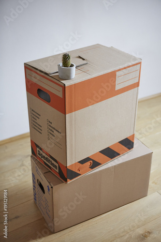 Our Best Canvas Prints